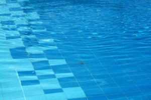水泳は育毛に良い