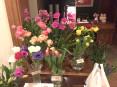 いつもお店の中にグリーンやお花があって素敵です。どこで買っていますか?